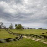dos_brisas_equine_pastures