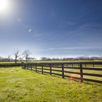 dos_brisas_pastures